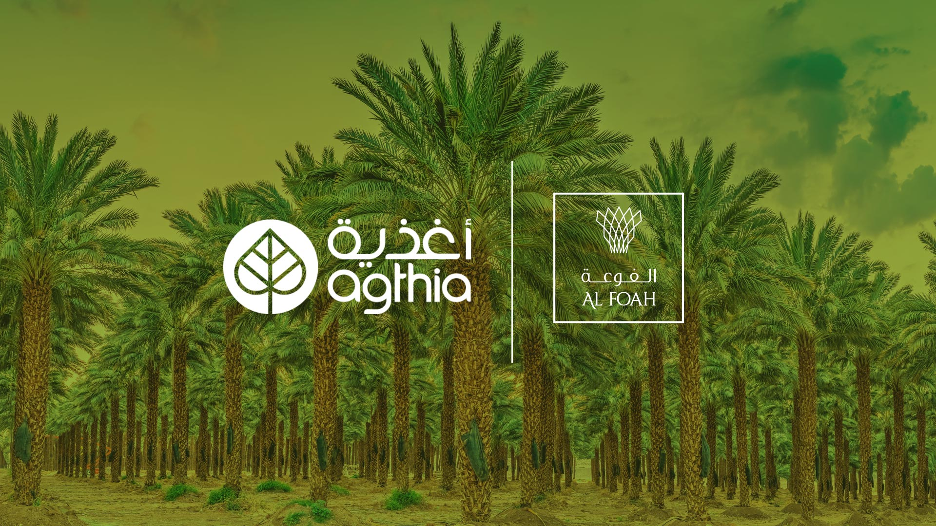 Agthia Completes Transaction With Al Foah To Create Top 10 F&B Company In The Region